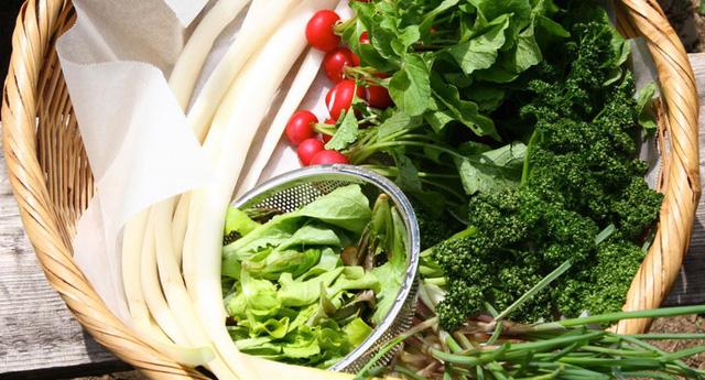 4 loại rau củ nghe tên thì rất quen thuộc nhưng nhà không có điều kiện thì đừng nghĩ đến việc mua ăn hằng ngày - ảnh 3