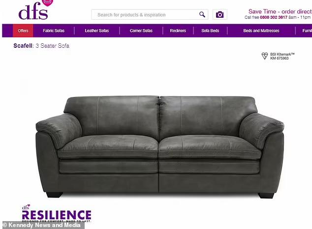 Đặt mua sofa qua mạng, sau 4 tháng chờ đợi người đàn ông dở khóc dở cười với món hàng nhận được - ảnh 1