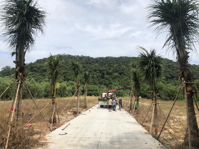 Nhà đầu tư nước ngoài rục rịch tìm đất, tuyển lao động tại Phú Quốc - ảnh 2