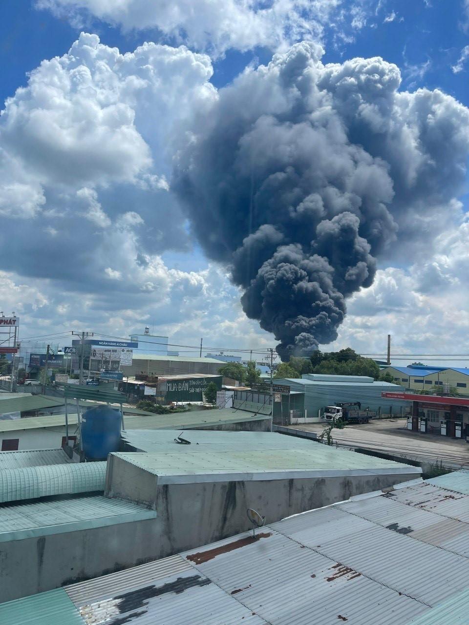 Đang cháy lớn trong khu công nghiệp ở Bình Dương - ảnh 2