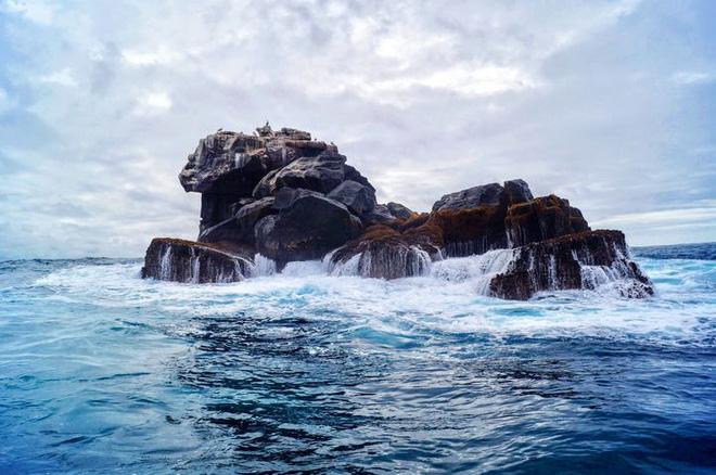 Quần đảo Galapagos: Thế giới thời tiền sử ở Thái Bình Dương! - ảnh 2