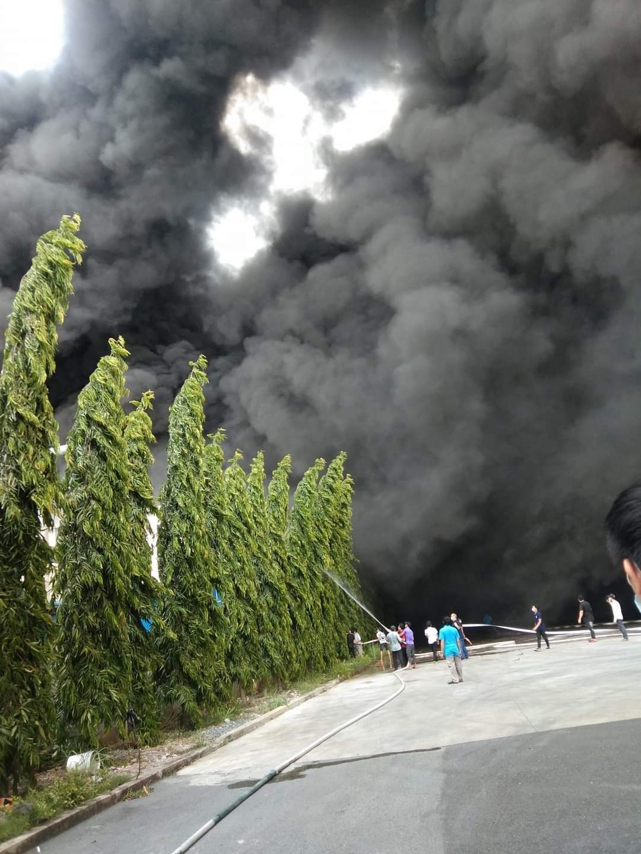 Đang cháy lớn trong khu công nghiệp ở Bình Dương - ảnh 3
