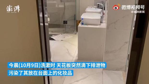 Thuê khách sạn cao cấp ở, cô gái bị phân người chảy từ trần nhà xuống trúng đầu, làm hỏng hết đồ đạc - ảnh 3