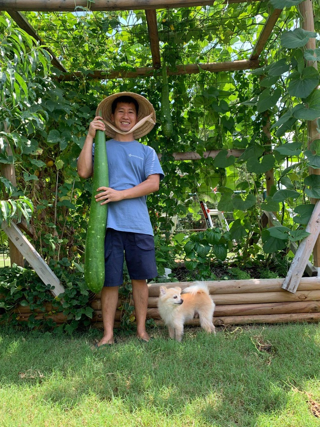 Chàng trai gốc Việt làm vườn 300m2, trồng ớt và hoa hồng ở Mỹ - ảnh 12