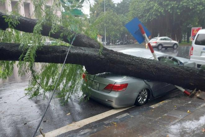 Cây me cổ thụ bật gốc đè bẹp xe Camry trong cơn mưa lớn ở Hà Nội - ảnh 3