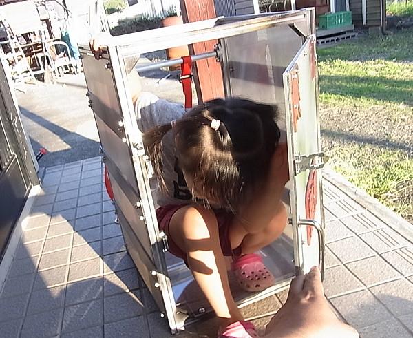 Chiều lòng con gái cưng, ông bố Nhật Bản chế tạo ra Nezuko Box khiến cộng đồng Kimetsu No Yaiba phát sốt - ảnh 3