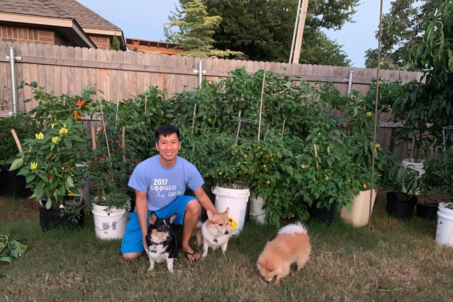 Chàng trai gốc Việt làm vườn 300m2, trồng ớt và hoa hồng ở Mỹ - ảnh 15