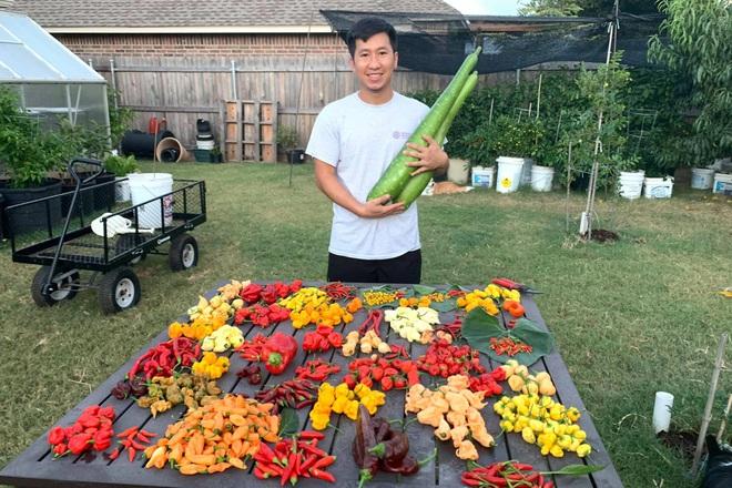 Chàng trai gốc Việt làm vườn 300m2, trồng ớt và hoa hồng ở Mỹ - ảnh 8