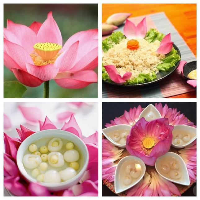 Điểm mặt các loài hoa không chỉ đẹp mà còn ăn được, có lợi cho sức khỏe - ảnh 7