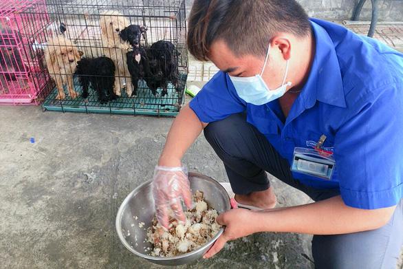 Chủ F0 đi cách ly, đàn chó 12 con được chăm sóc, tắm rửa: ''Để nó chết sao được'' - ảnh 2