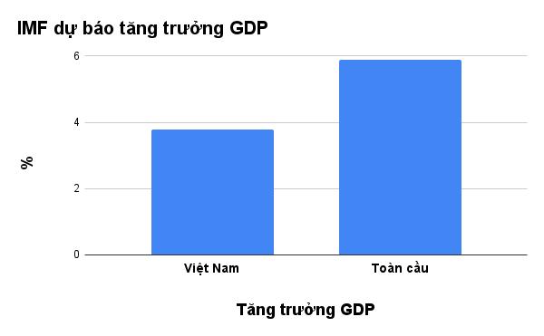 IMF hạ dự báo tăng trưởng GDP Việt Nam 2021 xuống còn 3,78% - ảnh 3