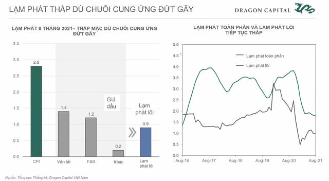 Phó Tổng giám đốc đầu tư Dragon Capital: Bất chấp Covid xảy ra, tăng trưởng 5-10 năm tới của Việt Nam vẫn sáng - ảnh 3