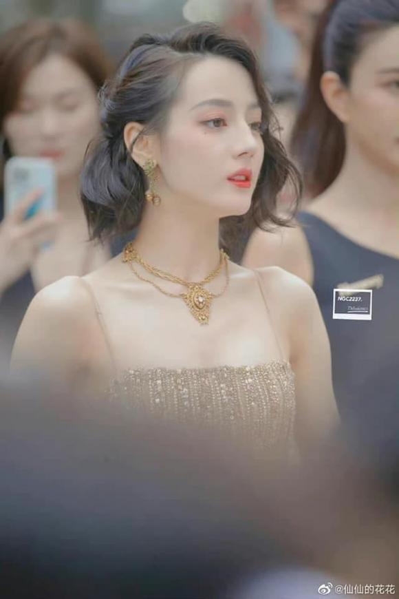 ''Mỹ nữ Tân Cương'' Địch Lệ Nhiệt Ba khoe vẻ đẹp nữ thần trên thảm đỏ, nhan sắc thế nào mà được so sánh với Phạm Băng Băng? - ảnh 6