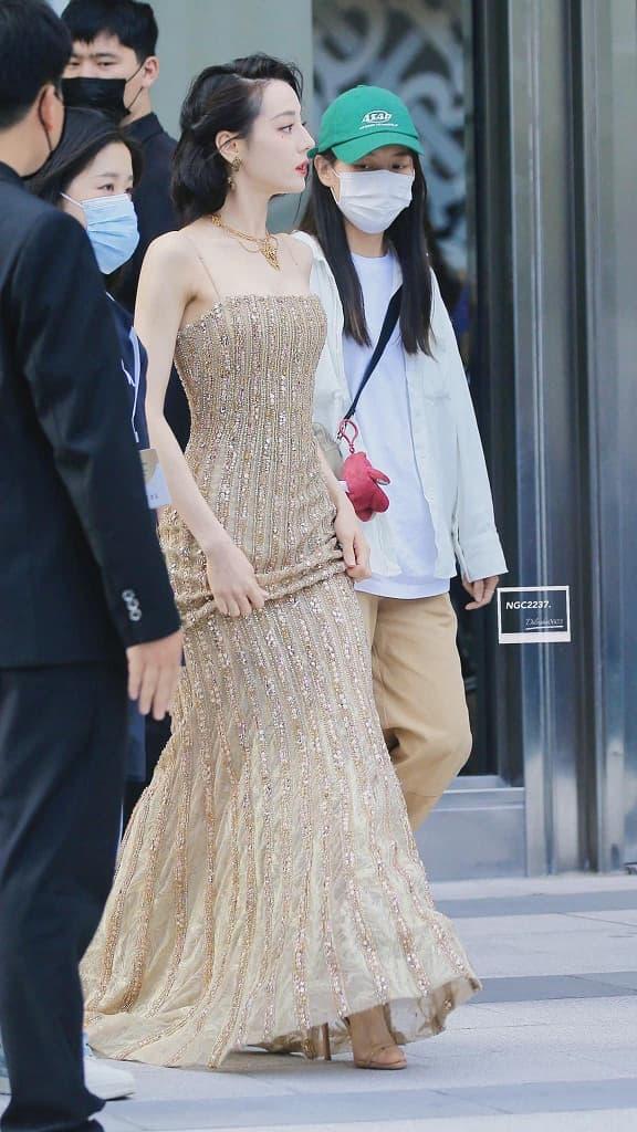 ''Mỹ nữ Tân Cương'' Địch Lệ Nhiệt Ba khoe vẻ đẹp nữ thần trên thảm đỏ, nhan sắc thế nào mà được so sánh với Phạm Băng Băng? - ảnh 8