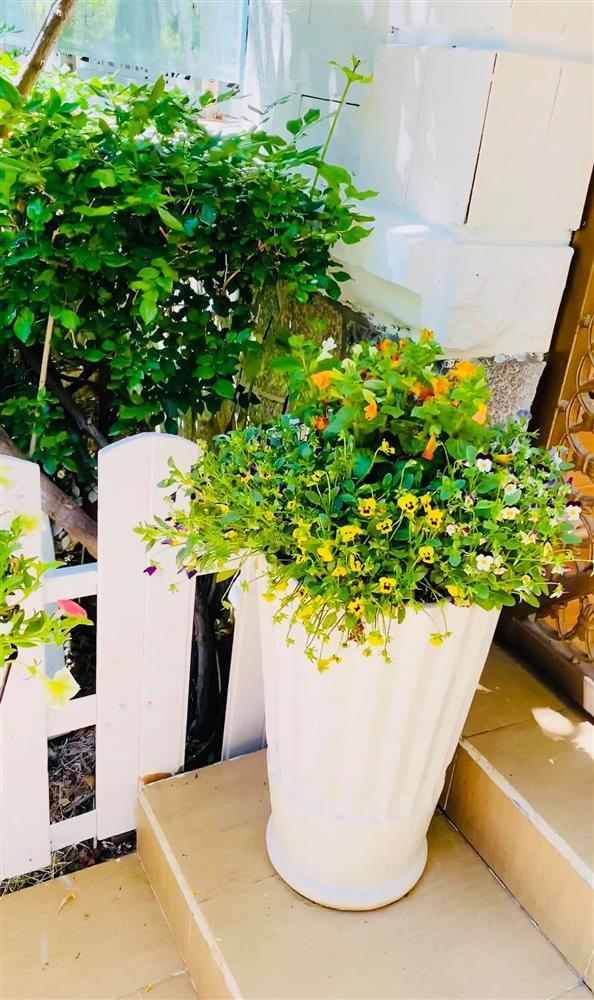 Vy Oanh khoe cận cảnh biệt thự ngập sắc hoa chồng tặng - ảnh 8
