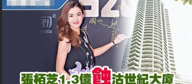 Trương Bá Chi quay lại thời đỉnh cao, kiếm vèo vèo trăm tỷ - ảnh 5