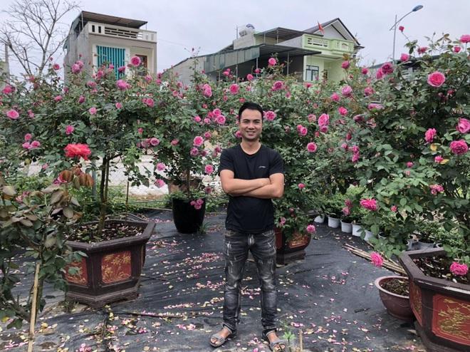 Gia chủ Thanh Hóa làm vườn hồng hơn trăm gốc tặng người thân - ảnh 1