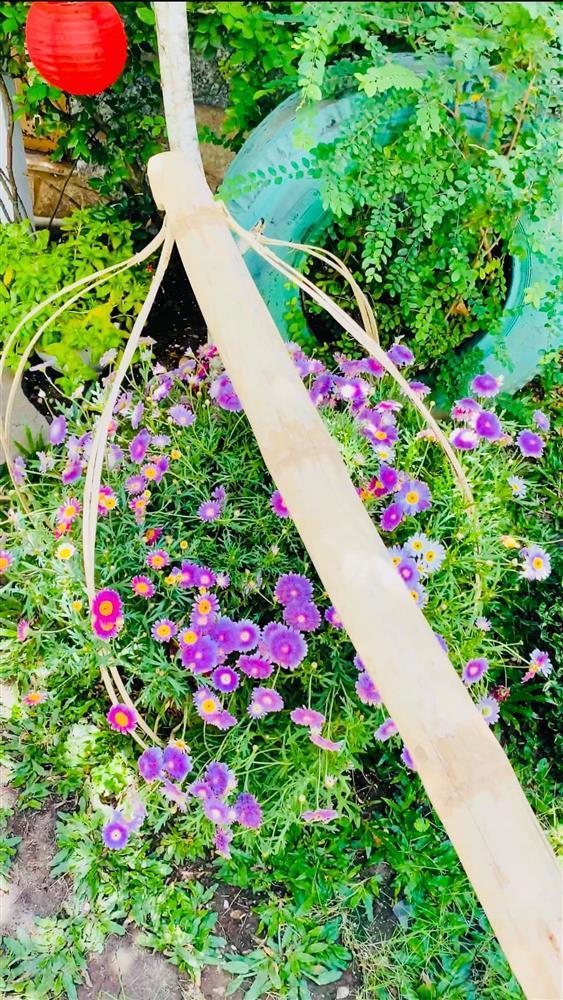 Vy Oanh khoe cận cảnh biệt thự ngập sắc hoa chồng tặng - ảnh 10