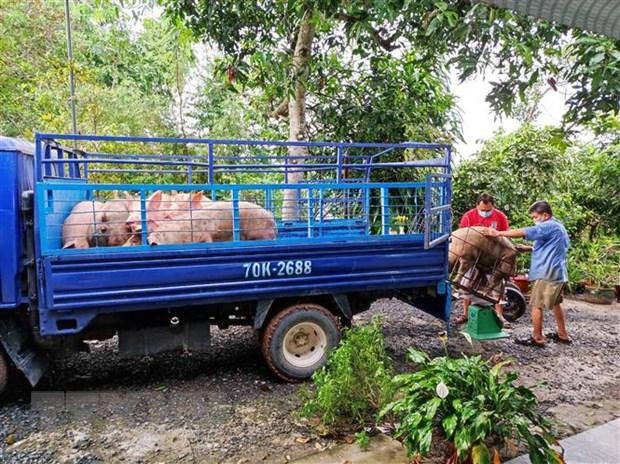 Giá thịt lợn tại các chợ vẫn cao dù giá lợn hơi giảm mạnh - ảnh 2