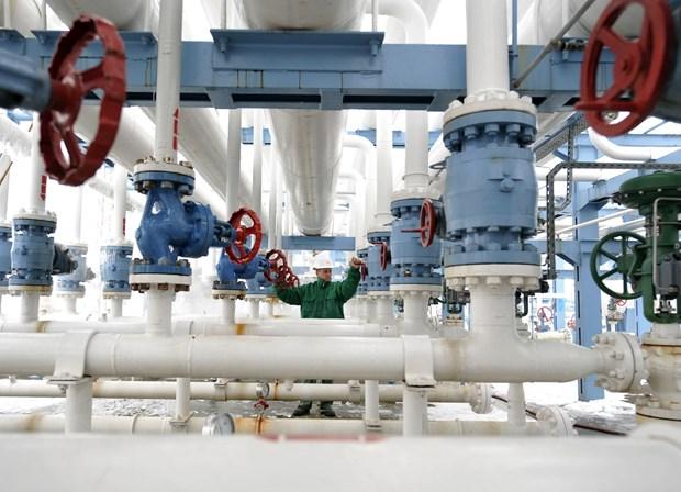 Giá dầu trên thị trường châu Á phục hồi trong phiên ngày 14/10 - ảnh 1