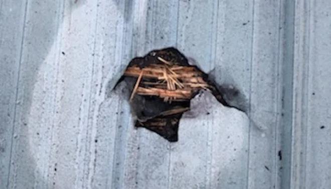 Thiên thạch rơi xuyên mái nhà trúng đầu giường khi đang ngủ, người phụ nữ may mắn sống sót nhờ một con chó - ảnh 3