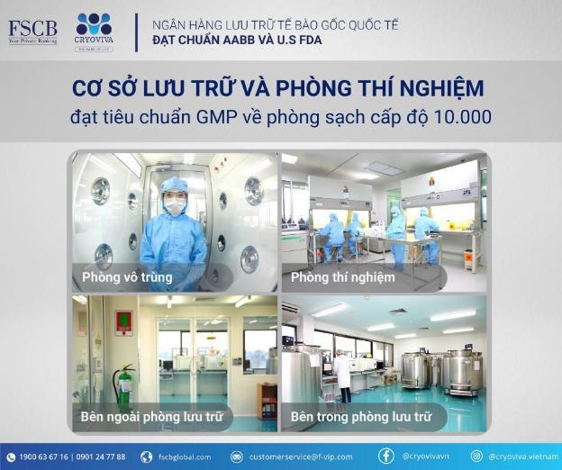 Lưu trữ tế bào gốc dây rốn tại Cryoviva Vietnam - niềm an tâm cho mẹ, bảo vệ tương lai cho bé yêu - ảnh 3