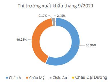 Dệt may Thành Công (TCM) báo lỗ tháng thứ 2 liên tiếp, 9 tháng hoàn thành chưa tới 40% mục tiêu lợi nhuận cả năm 2021 - ảnh 3
