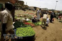 IMF thông qua cải cách chính sách để hỗ trợ các nước thu nhập thấp