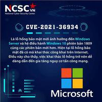 Phát hiện lỗ hổng bảo mật trên Windows 10, mã khai thác công khai trên internet