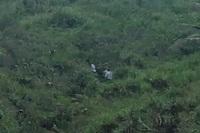 4 ngư dân băng rừng trốn khỏi khu phong tỏa