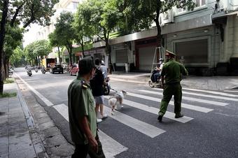 Hà Nội: Dắt chó đi vệ sinh, cô gái trẻ bị phạt 2 triệu đồng