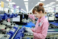 UAE - Thị trường tiềm năng cho hàng Việt