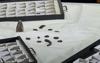 Đào được con heo đất chứa kho báu ngàn năm của người Viking