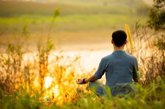 'Đường về tỉnh thức' giúp né tránh những nguồn cơn gây đau khổ
