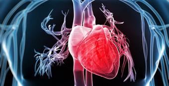 GS Trương Quang Bình cảnh báo: Tần số tim cao sẽ có nguy cơ tử vong do các biến cố tim mạch