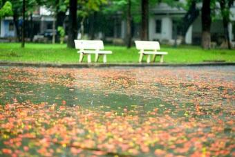 Có lẽ Sài Gòn thực sự nghỉ ngơi...
