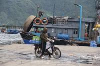 20 người buôn bán trong cảng cá Thọ Quang dương tính với SARS-CoV-2