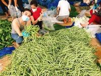 Học trò danh ca Ngọc Sơn tặng hàng tấn rau củ mỗi ngày cho người khó khăn