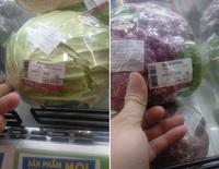 Đi siêu thị thấy bắp cải có giá hơn 400k, chàng trai tá hoả nhưng liệu có phải rau bị tăng giá như lời đồn?