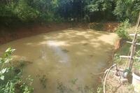 Phát hiện một em nhỏ tử vong do đuối nước trong hồ cá