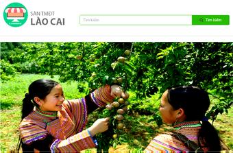 Thương mại điện tử Lào Cai: Hướng tới phát triển chuyên nghiệp, hiện đại