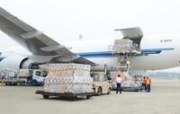 Kiến nghị Thủ tướng chưa cho phép thành lập hãng hàng không của ông Jonathan Hạnh Nguyễn