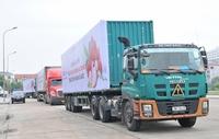 Linh hoạt giải pháp gỡ khó trong logistics thương mại điện tử