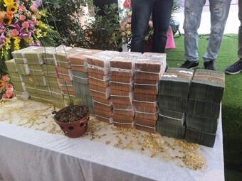Mua bán lan var gần 290 tỷ đồng: Có thể bị xử lý hình sự nếu là giả