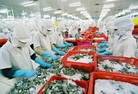 Hoa Kỳ sẽ không ban hành biện pháp hạn chế thương mại đối với hàng hóa xuất khẩu của Việt Nam