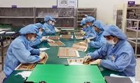 IMF hạ dự báo tăng trưởng GDP của Việt Nam