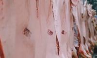 Nếu Vissan ngừng sản xuất trong 3 đến 4 tuần, sẽ ảnh hưởng như thế nào đến thị trường thịt lợn ở TP.HCM và các phương án bù đắp?