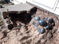 Sửa nhà, bất ngờ phát hiện 158 quả bóng bowling dưới chân cầu thang