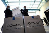 COVAX dự kiến có thêm 250 triệu liều vaccine trong những tuần tới