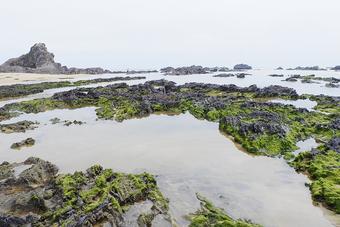 Ấn tượng gành đá Lộ Diêu với nhiều khối đá hình thù kỳ lạ